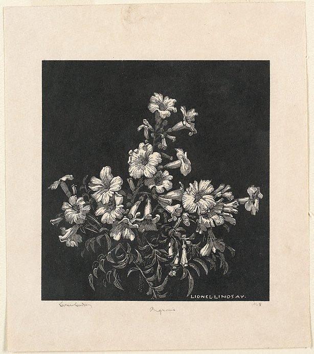 An image of Bignonia