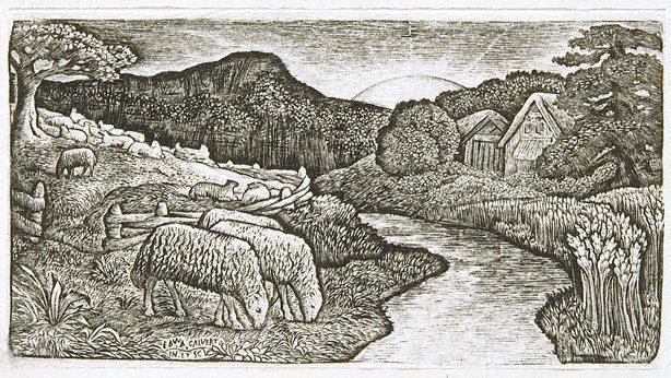 An image of The sheep of his pasture