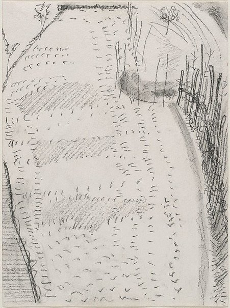 An image of Ticinese seedlings by Ben Nicholson