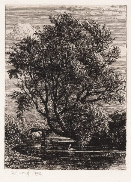 An image of The willow by Samuel Palmer