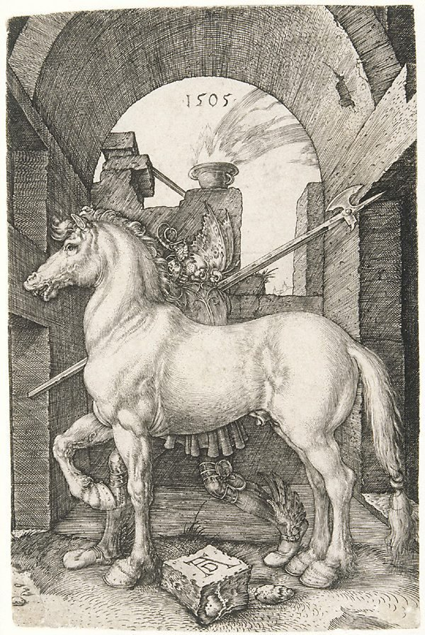 An image of The small horse