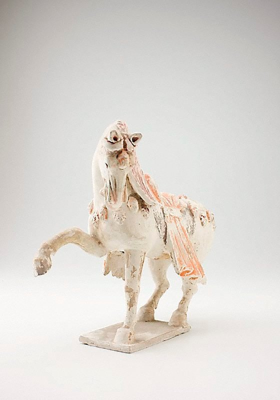 An image of Horse with saddlecloth