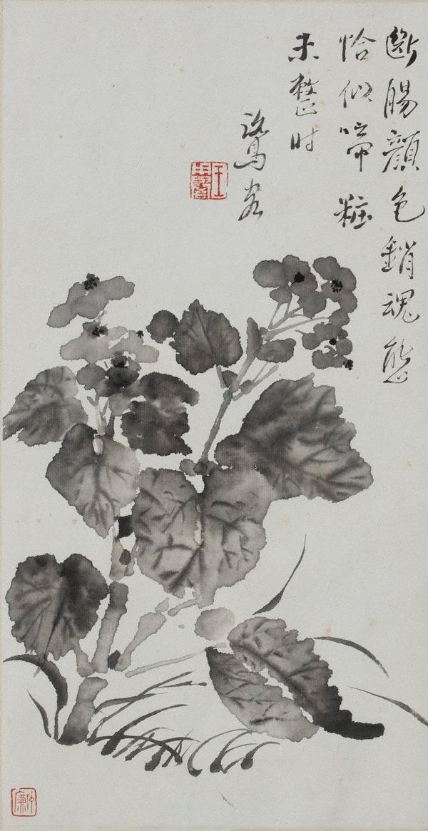 An image of Begonia
