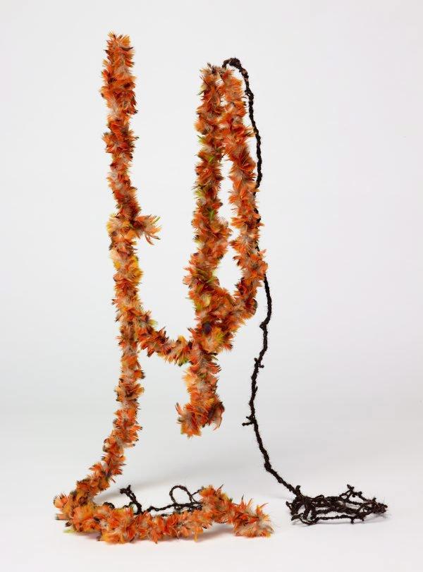 An image of Worrutjmirr/Ganbalatjmirr (feathered string)