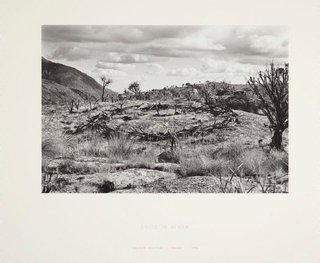 AGNSW collection Sir Richard Long Circle in Africa 1978