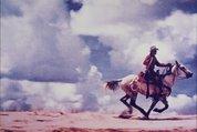 Untitled (cowboy), 1980-1989 by Richard Prince