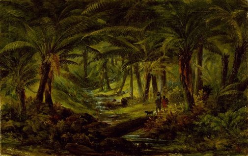 An image of (Fern tree gully) by Thomas Clark