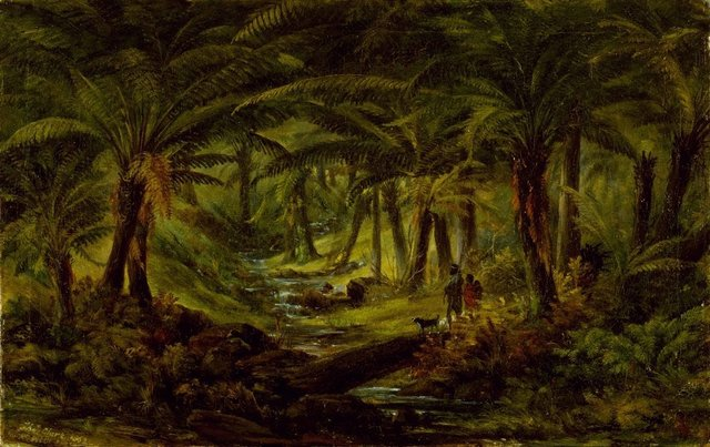 An image of (Fern tree gully)