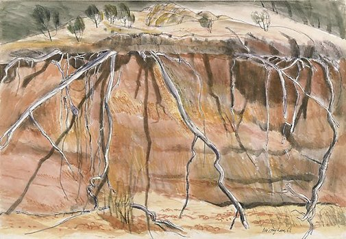 An image of Erosion pattern by Hal Missingham