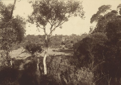 An image of Distant view of Margaret Preston's house at Berowra by Harold Cazneaux