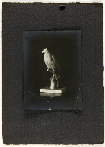 An image of Image of a sculpture of a hawk by Eleonore Lange by
