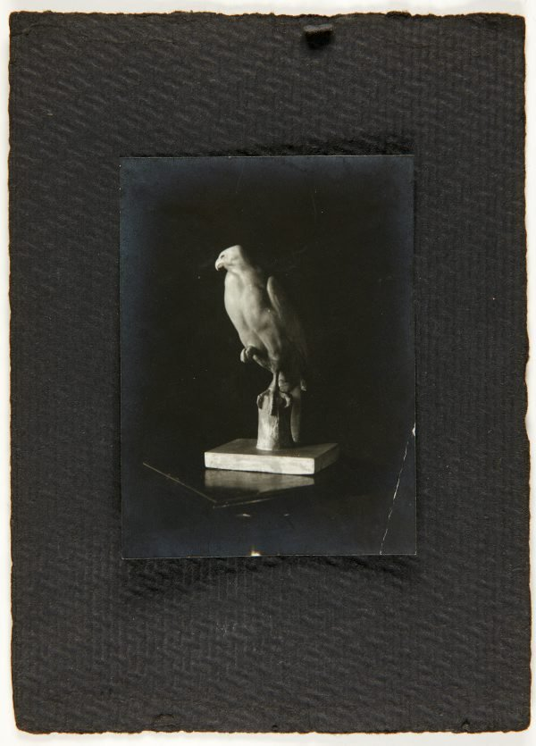 An image of Image of a sculpture of a hawk by Eleonore Lange