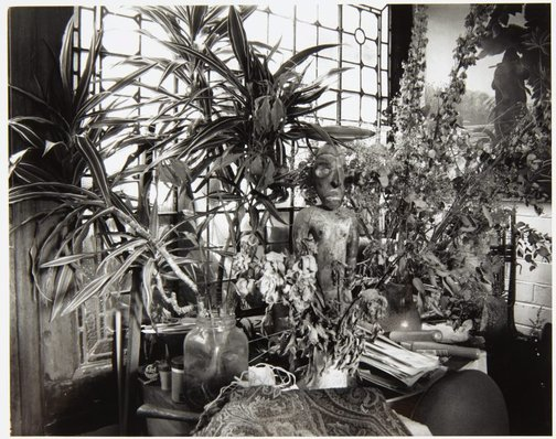 An image of Margaret Olley's house, Sydney by Jenni Carter