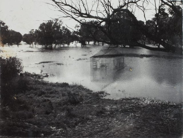 An image of Image of flooded 'Australian cottage' 1973 by Herbert Flugelman
