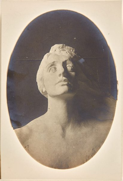 An image of Image of study for 'Head of Australia' by Dora Ohlfsen by Dora Ohlfsen