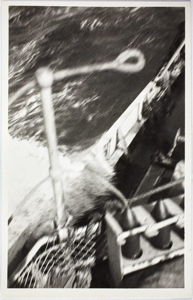 An image of Detail of HMAS Bombo moving through the water by Robert Klippel
