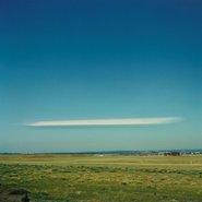 Image: Rosemary Laing greenwork TL #8 1995, type C photograph, 100 × 100 cm, anonymous gift 2004 © Rosemary Laing