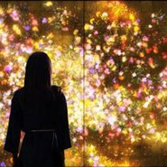 Image: teamLab Flowers and People – Gold 2015(detail), Art Gallery of New South Wales © teamLab, courtesy Martin Browne Contemporary, Sydney