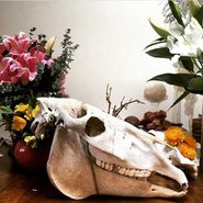 Image: A Seasonal Concepts arrangement