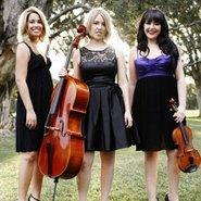 Image: Strelitzia Trio