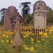Image: Rookwood Cemetery