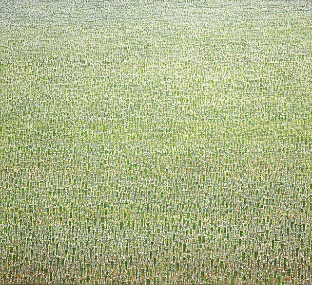 Belongil Field