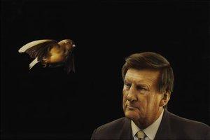 A bird flies past Jeff Kennett