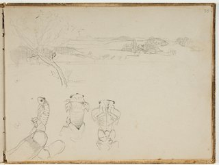 STATE LIBRARY OF NEW SOUTH WALES COLLECTION Arthur Streeton *Studies of cicada in sketchbook* 1888-89 (detail)  This page from Arthur's sketchbook shows some of the drawings of cicadas he made when he was planning the composition of his painting *Spring*.