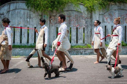 Mella Jaarsma Dogwalk 2015-2016