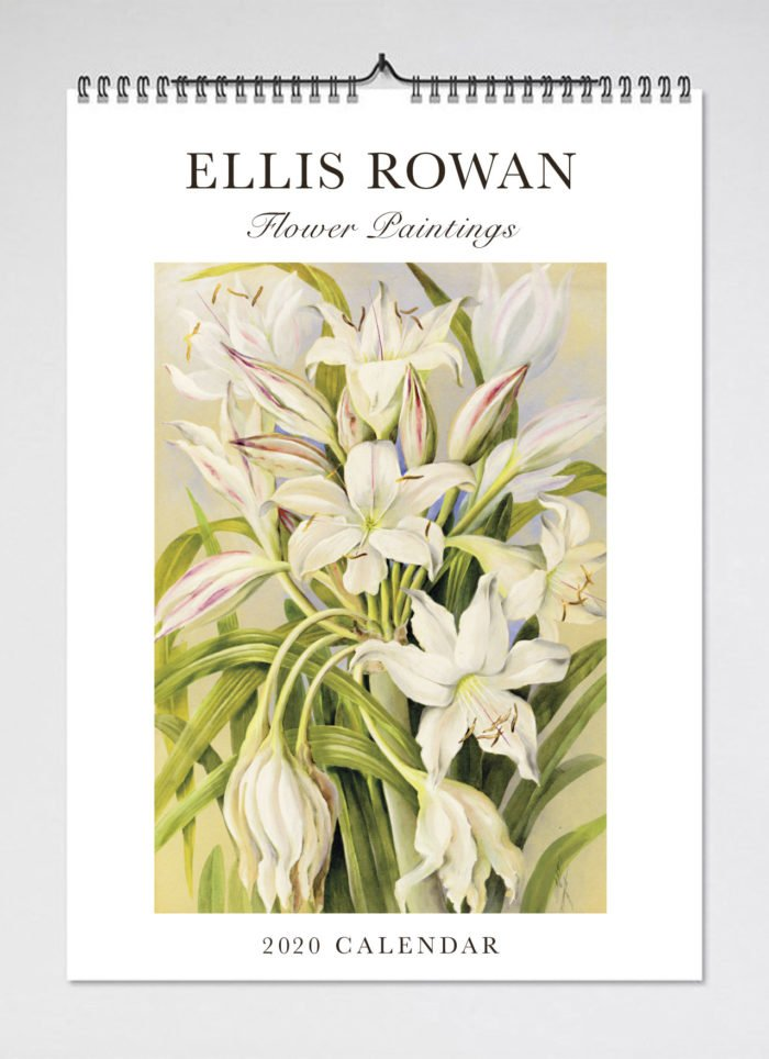 Rowan Calendar 2020 2020 Calendar Ellis Rowan Flower Paintings :: Gallery shop :: Art