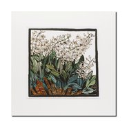Margaret Preston, Australian Rock Lily mounted print,  - $29.95