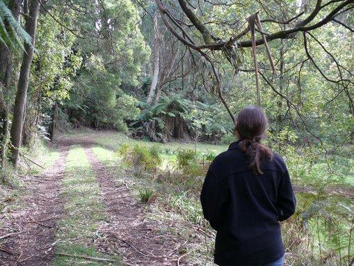 Mary Tonkin, walking up the track towards the rainforest.