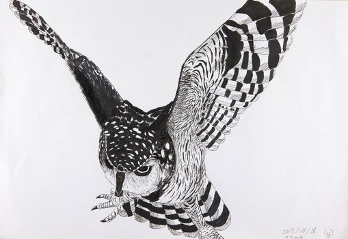 WinnerFu Liuage 11Owlpencil, pen  This is a picture of an owl that is intimidating you. I tried to make him look powerful, letting him spread his wings and staring in front of the picture. I used lots of lines to make shadows of the owl.