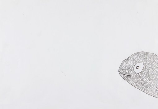 WinnerPia Vandeleurage 7Hello!pencil  A peeking chameleon – it's hard to hide on white paper.