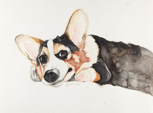 WinnerYulong Qiuage 16Ginger dogpencil, watercolour  This is the angel in my heart, his eyes are the brightest eyes I've ever seen. After I met him, I decided to draw him from my memory.
