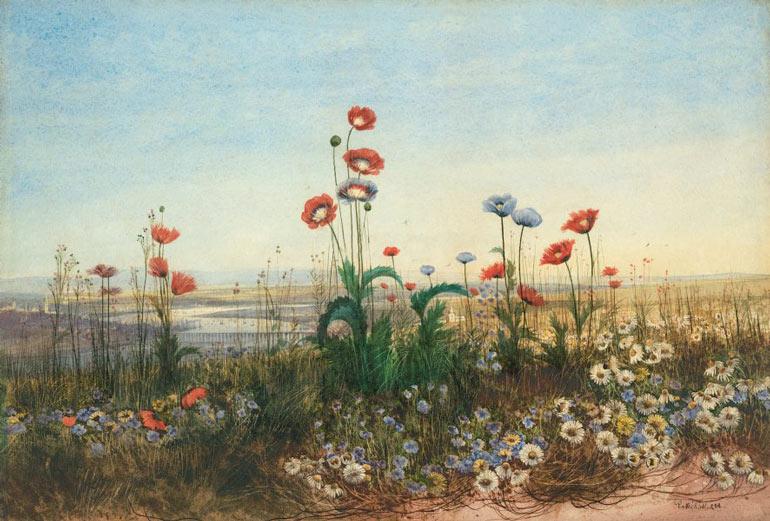Victorian watercolours :: Art Gallery NSW